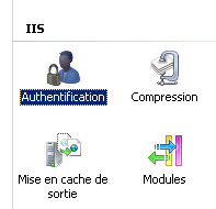 "Rubrique ""Authentification"" le console IIS 7.0"